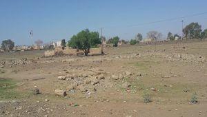 مليشيا الحوثي تنهب أراضي تابعة للحرس الجمهوري في ذمار (وثيقة)