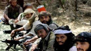 عدوهم المشترك واحد: علاقات غامضة بين تنظيم القاعدة والقبائل اليمنية (ترجمة خاصة)
