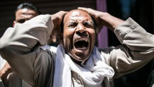 """مسؤول أممي: أوضاع حرية التعبير والإعلام في مصر """"مرعبة"""""""