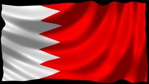 """""""إجراء شاذ"""" بالبحرين ضد الصحفيين"""