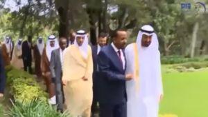 أسلحة وقاعدة وتهريب.. تقرير أممي يرصد أنشطة الإمارات بالصومال