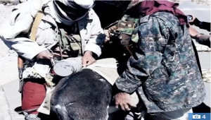 تنظيم القاعدة في اليمن يكشف عن استخدامه الحمير في التفجيرات التي ينفذها (ترجمة خاصة)