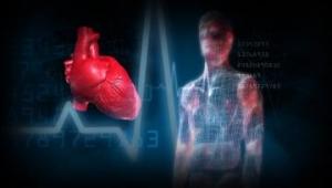 مرض القلب قد يكون له تأثير طويل المدى على الدماغ