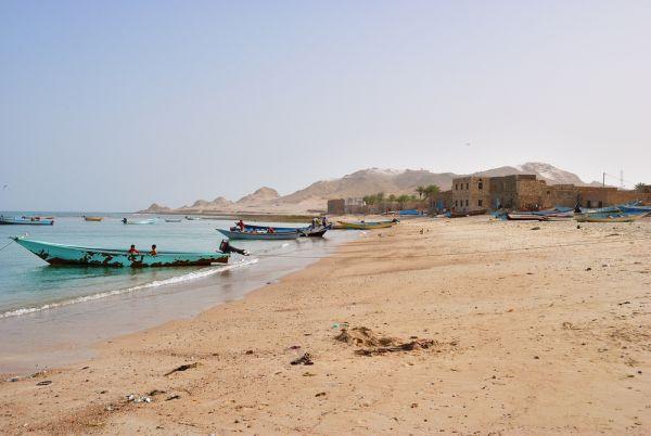 موقع بريطاني: الإمارات تسعى لبناء منتجع في سقطرى على غرار دبي (ترجمة خاصة)