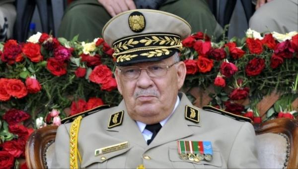 الجيش الجزائري يضمن المرحلة الانتقالية ويتعهد بملاحقة