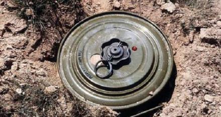 مقتل شقيقين في انفجار لغم في الساحل الغربي