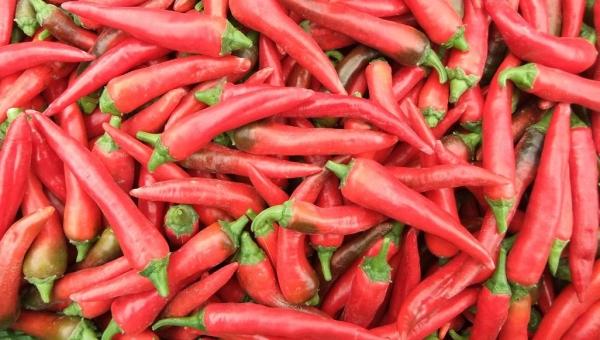 منتجات تساعد على حرق السعرات الحرارية بشكل سريع.. تعرف عليها