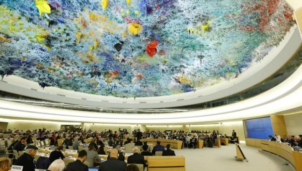 الأمم المتحدة تتهم التحالف العربي بعدم جدية التحقيقات التي يجريها