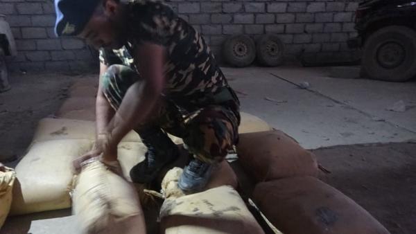 الجوف.. ضبط 40 كيلوجراما من الحشيش كانت في طريقها إلى الحوثيين