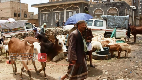 بين الفرحة والحرمان.. اليمنيون: عيد أضحى بلا أضحية (تقرير)