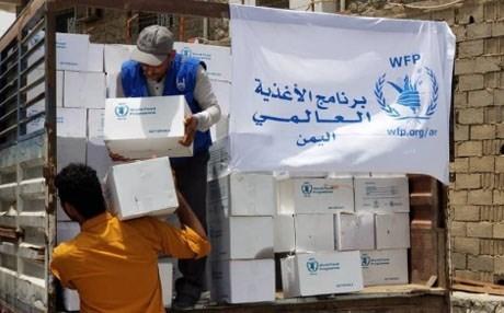 غياب مشاريع التمكين.. كيف تهدر منظمات الأمم المتحدة المليارات في برامج إغاثة فاسدة وغير مستدامة؟ (تقرير)