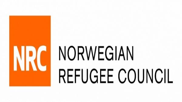 المجلس النرويجي للاجئين يدعو إلى ضرورة وقف التصعيد في مأرب