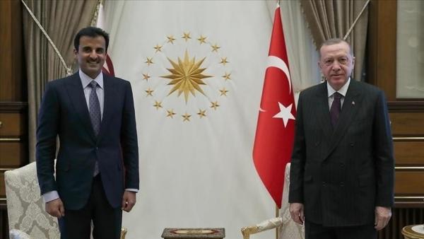 أردوغان وأمير قطر يبحثان العلاقات الثنائية والقضايا الإقليمية