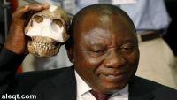 اكتشاف حفريات لأشباه إنسان في افريقيا يثير انتقادات