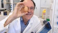 عالم أسترالي يخترع جهازًا لإعادة البيضة نيئة بعد سلقها