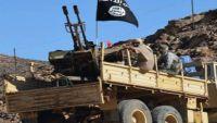 من يحرك القاعدة في أبين واليمن ؟! تقرير خاص