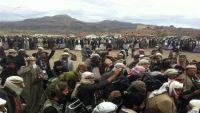 رئيس تحالف قبائل مأرب: ميليشيات الملالي تقاتل مع الحوثي