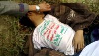 قيادي بمقاومة مأرب: 29 جثة لعناصر كتائب الحسين الحوثية متناثرة بجبهة صرواح