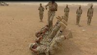 مأرب : تخرج دفعة جديدة من المهام الخاصة في اللواء14 بصحن الجن