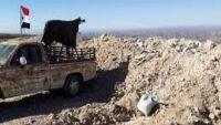 قائد مقاومة لحج يهاجم التحالف العربي بسبب قصف يافع