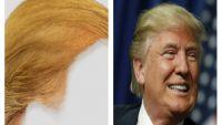 اعتاد مغازلتي.. مصففة رأس ترامب تكشف أسرار شعره، يغرقه بالجل ولا يقرب الحلاقين.. هل هو حقيقي؟