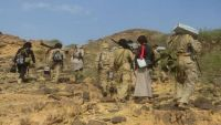 مقتل وجرح العشرات من الحوثيين في هجوم موسع للجيش الوطني بصرواح مأرب
