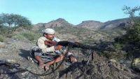 تعز.. الجيش الوطني يصد سلسلة هجمات للميليشيات الانقلابية في ريف المحافظة