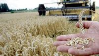 الخرطوم تستضيف فعاليات المؤتمر العربي الثالث للاستثمار الزراعي