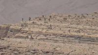 مأرب .. الجيش الوطني يستعيد اجزاء واسعة من جبل مرثد والمعارك مستمرة