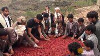 أمريكيون يعملون على إعادة تقديم البن اليمني للعالم (ترجمة خاصة)