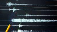 زلزال بقوة 4.6 ريختر يضرب محافظات جنوبية