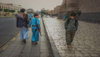 السنيدار... صورة اليمن إلى العالم