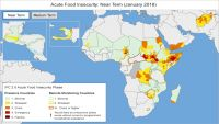 وكالة دولية: اليمن يقترب من المجاعة ويدخل مرحلة الأزمة الغذائية (ترجمة خاصة)