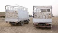 أمن مأرب يضبط شاحنتي غاز كانتا في طريقهما للسوق السوداء