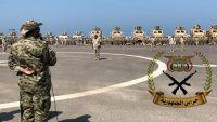 طارق يقاتل غرب اليمن.. هل يتجه إلى تعز؟ (تقرير)