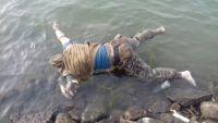 مسلحون مجهولون يغتالون مواطناً في الشيخ عثمان ويرمون جثته في البحر
