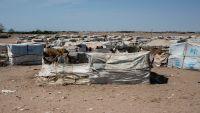 معركة الحديدة .. ضغط دولي وقلق إنساني وأسباب إستراتيجية وعسكرية تقف في وجه أبوظبي (تقرير خاص)