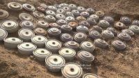 العقيلي: انتزاع 16 ألف لغم من جزيرة ميون زرعها الحوثيون
