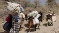 الأمم المتحدة: نزوح أكثر من 78 ألف أسرة في الحديدة