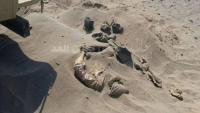 عدن.. العثور على جثث مدفونة في المنطقة الحرة بالمنصورة