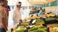 بالأرقام.. الزراعة المحلية في قطر تحقق تقدماً ملحوظاً