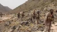 الجيش الوطني يعلن تحرير سلسلة جبال رشاحة بصعدة