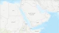 """سبع دول متشاطئة تبحث مبادرات دولية حول """"البحر الأحمر وخليج عدن"""""""