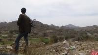 الضالع .. الجيش الوطني يصد هجوماً حوثياً في الحشاء