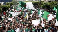 صحيفة بريطانية: الثوريون الجدد حفظوا دروس الربيع العربي