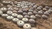 انتزاع 795 لغما زرعها الحوثيون في أول أسبوع من يوليو