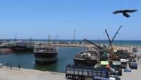 صحيفة:  تنافس بين قطر والإمارات على النفوذ بالصومال