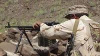 مقتل 5 من عناصر الحوثي وجرح أخرين في كمين للمقاومة في الضالع
