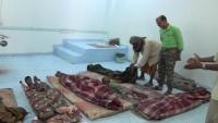 مقتل تسعة مدنيين وجرح أخرين في قصف حوثي على الأحياء السكنية بالحديدة