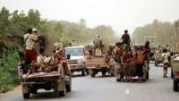 الحوثيون يعيدون حفر الخنادق ونصب المتارس في الحديدة